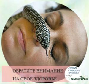 Во сне укусила змея: толкование от того куда именно укусила