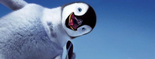 К чему снится пингвин женщине фото