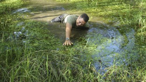 тонуть в болоте и выбраться