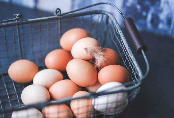 К чему снятся яйца беременной женщине фото
