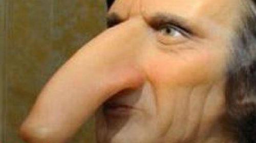 очень большой нос