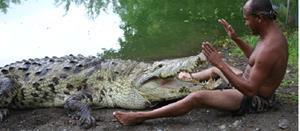 Снится крокодил, который вылез из воды на берег