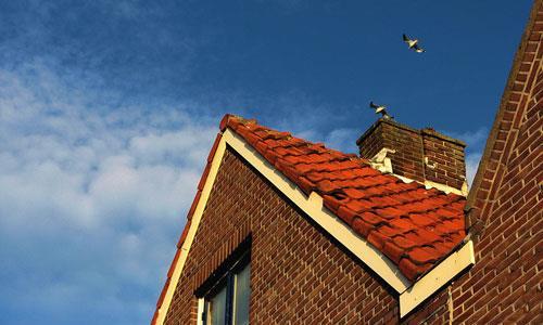 К чему снится разрушенная крыша дома фото