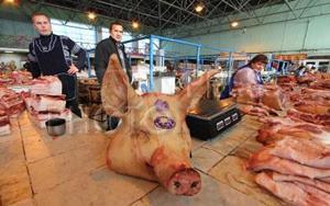 К чему снится свиная голова без крови фото