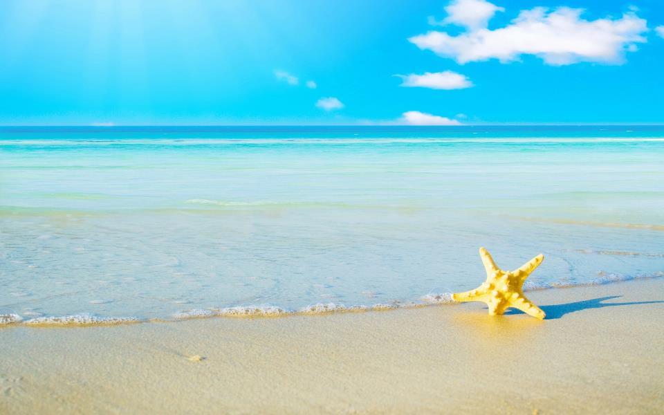 К чему снится желтое море фото