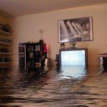 Приснилась вода на полу: что бы это значило?