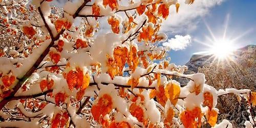 снег осенью