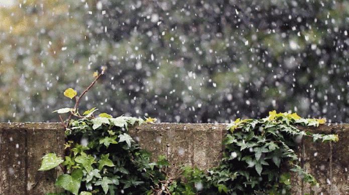 Снег алеша ноты для фортепиано