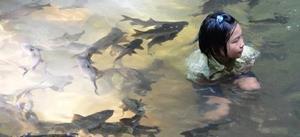 Плавает с рыбой