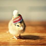 Цыпленок в шапке