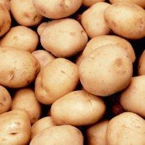 К чему снится картофель: мнение знаменитых толкователей