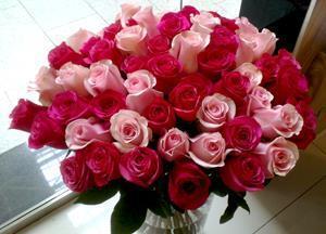Розы двух оттенков