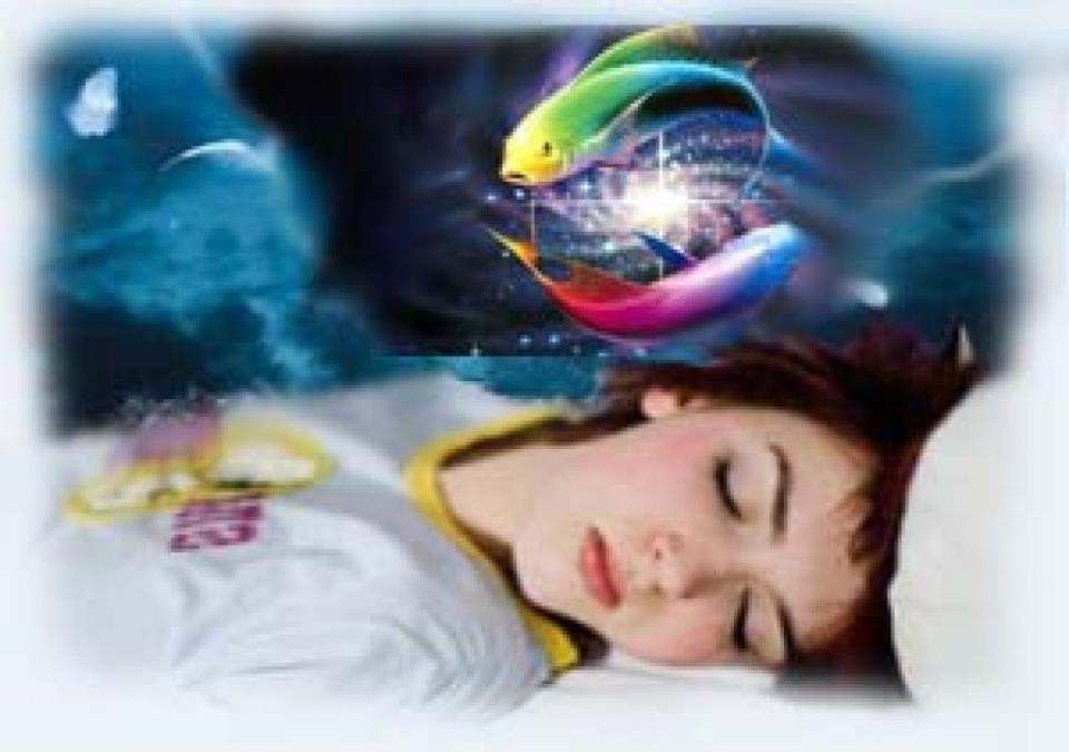 К чему снится рыба в сетке женщине