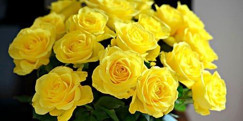 видеть во сне букет желтых цветов