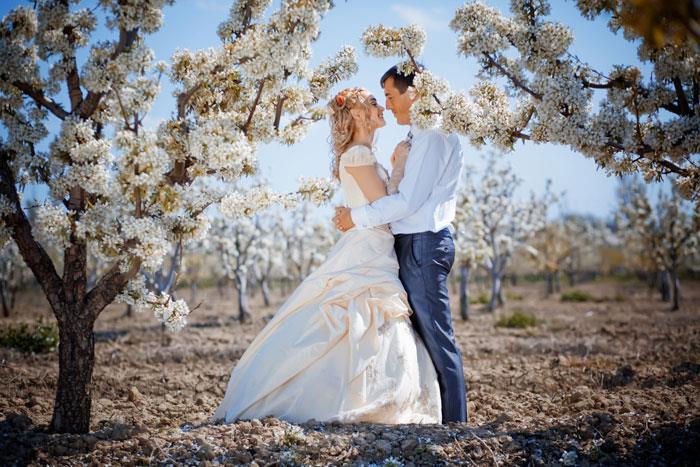 Сонник: к чему снится свадьба?