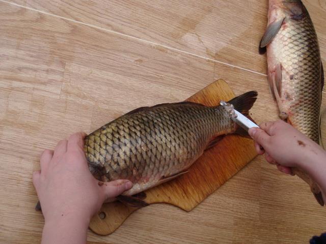 К чему снится очищенная рыба женщине