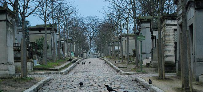 приснилось кладбище