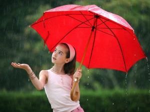 Прятаться под зонтом от дождя - к казусным ситуациям
