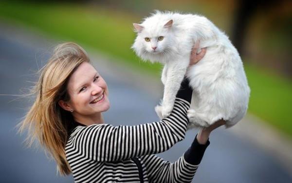 Девушка держит белого кота