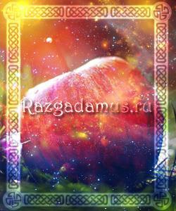 к чему снится яблоневый сад во сне