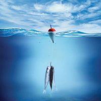 к чему снится ловить рыбу на удочку