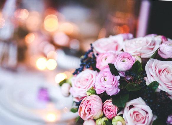 Цветы анютины глазки сонник