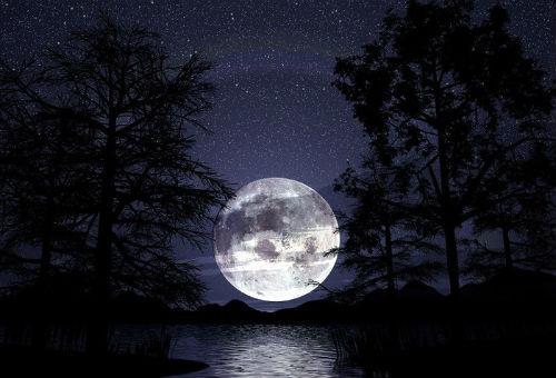 Сны по лунным дням