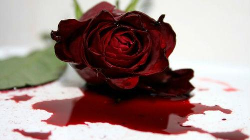 к чему снится черная кровь месячные