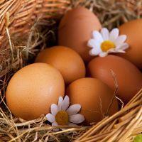 к чему снятся яйца