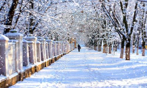 К чему снится снег во дворе фото