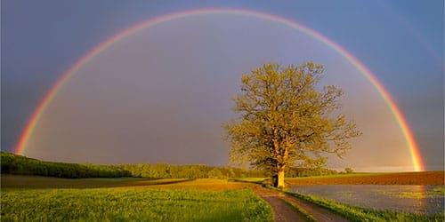 радуга после дождя