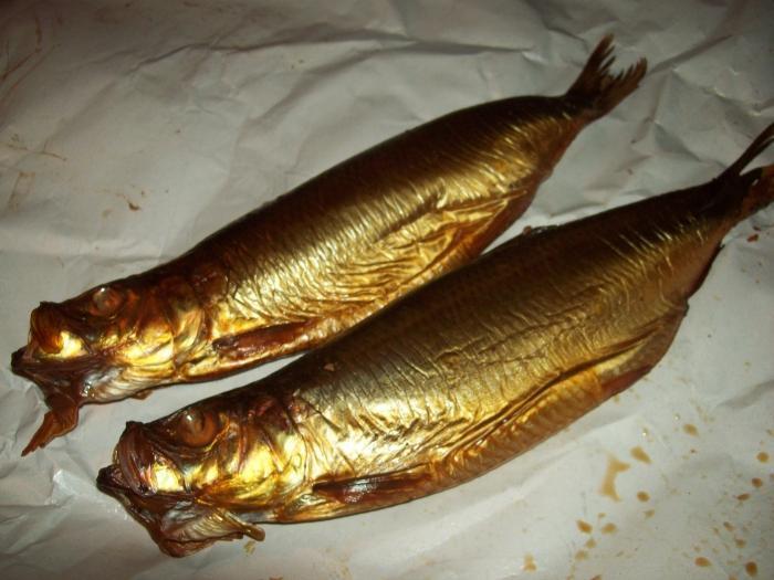 К чему снится червивая рыба женщине