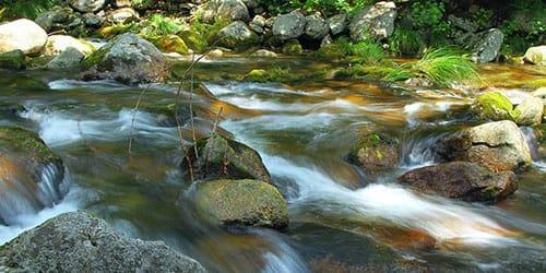 горный поток