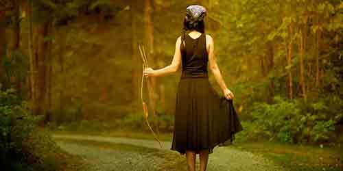 сонник лук и стрелы