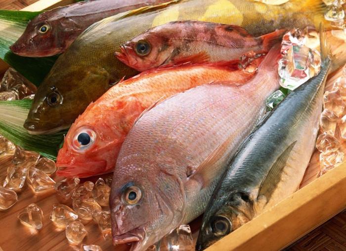 Сонник: к чему снится рыба