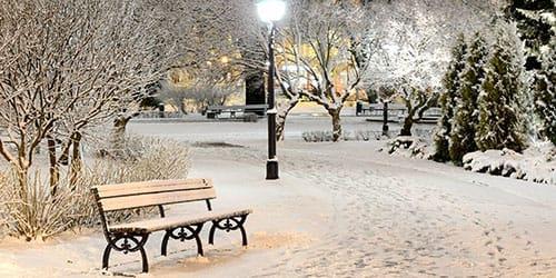 выпал снежок