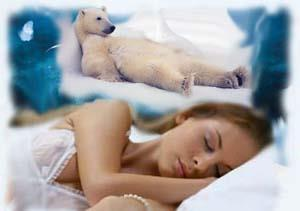 Девушке сниться медведь