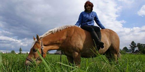 сидеть на лошади во сне
