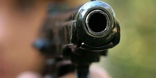 сонник стрельба