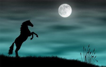 Конь встает во сне на дыбы - к ссоре