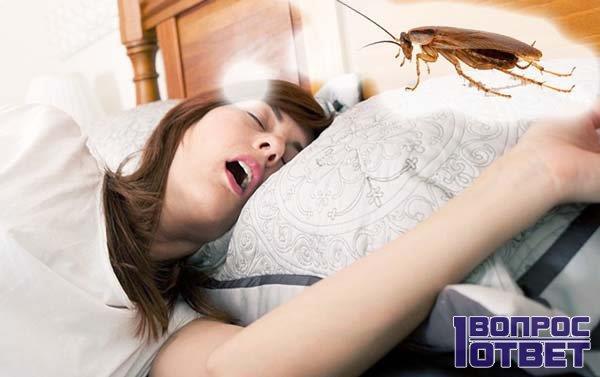 Девушка спит и видит сон о таракане