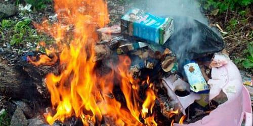 к чему снится собирать мусор