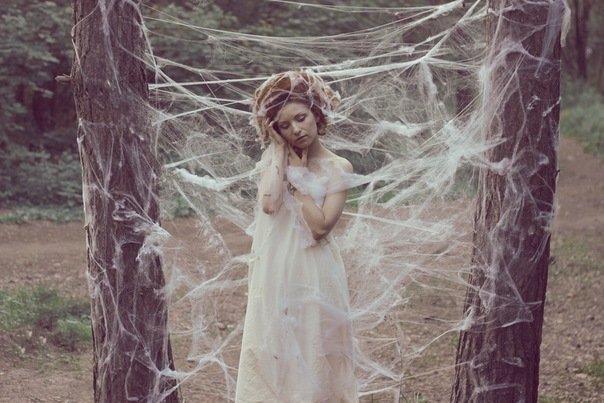 Девушка в паутине