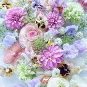 к чему снятся цветы?