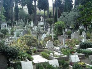 К чему снится закрывать могилу фото