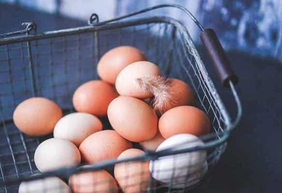 К чему снятся яйца с кровью куриные фото