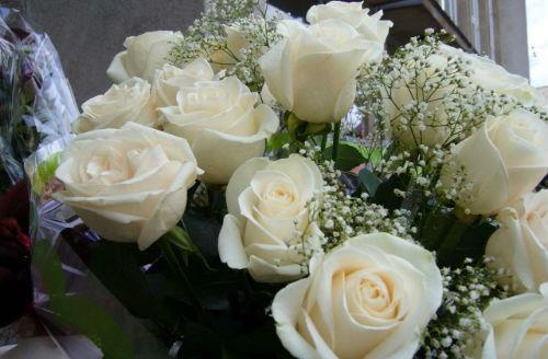 Если приснилось, что вы дарите кому-то цветы - предстоит важная для вас встреча.