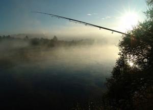 Прохладный солнечный день на озере