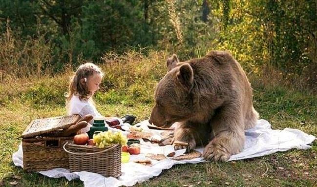 Фото К чему снится кормить медведя женщине