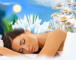 Снятся цветы во сне (фото)